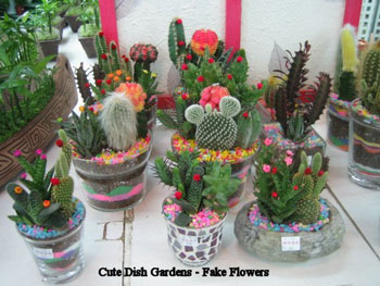 fake flowers on cacti